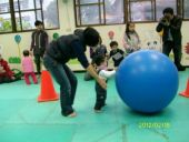 roller large ball game activities